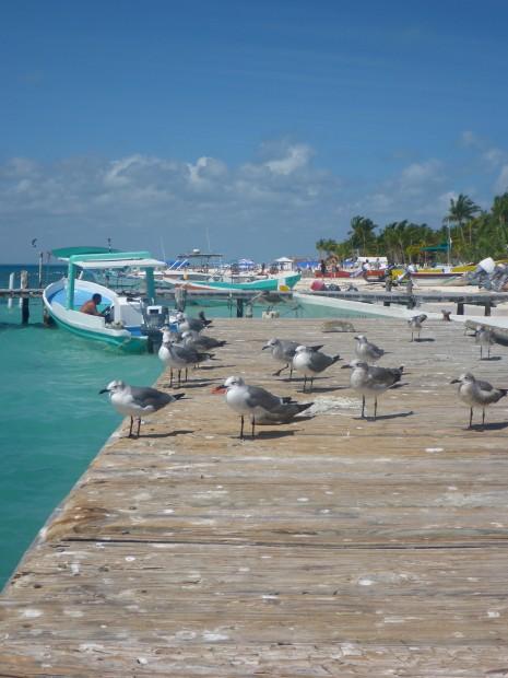 Fischerpier der Isla Mujeres