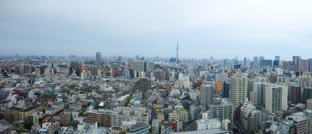 ein kleiner Teil von Tokyo city, im Hintergrund der Skytree -das 2. hoechste Gebaeude der Welt