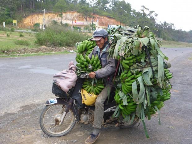 Banana-Joe auf dem Weg nach Hause